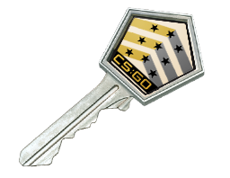 Shadow Case Key (5x)