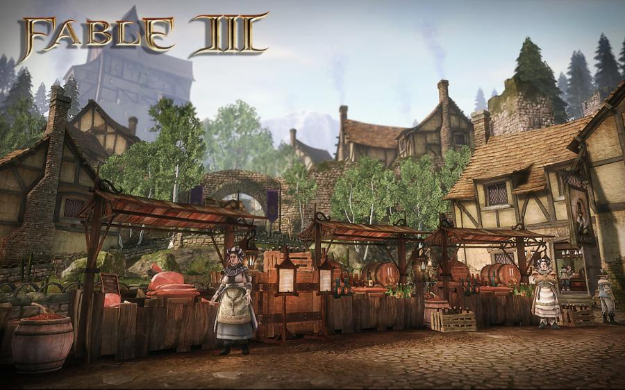 Fable 3 Key Screenshot 12