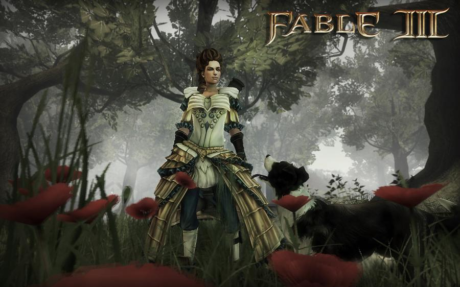 Fable 3 Key Screenshot 5