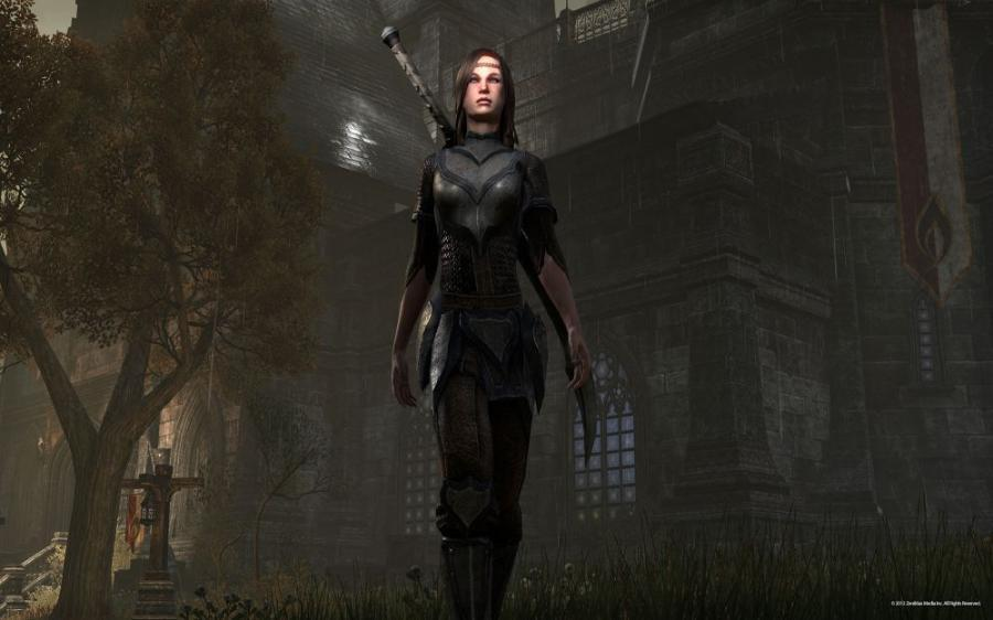 The Elder Scrolls Online - Tamriel Unlimited - Imperial Edition Screenshot 8