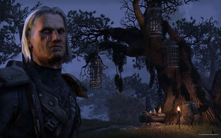 The Elder Scrolls Online - Tamriel Unlimited - Imperial Edition Screenshot 4
