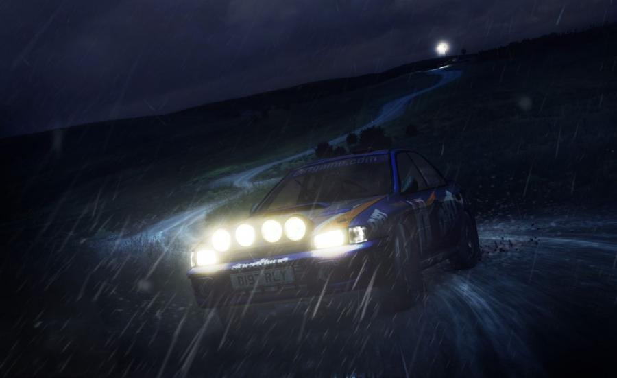 DiRT Rally Screenshot 8