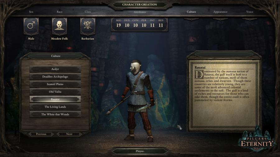 Pillars of Eternity - Game of the Year Edition Screenshot 5