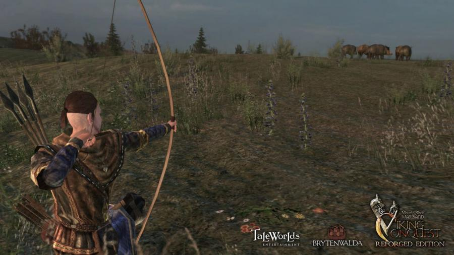 Mount & Blade Warband - Viking Conquest Reforged Edition (DLC) Screenshot 2