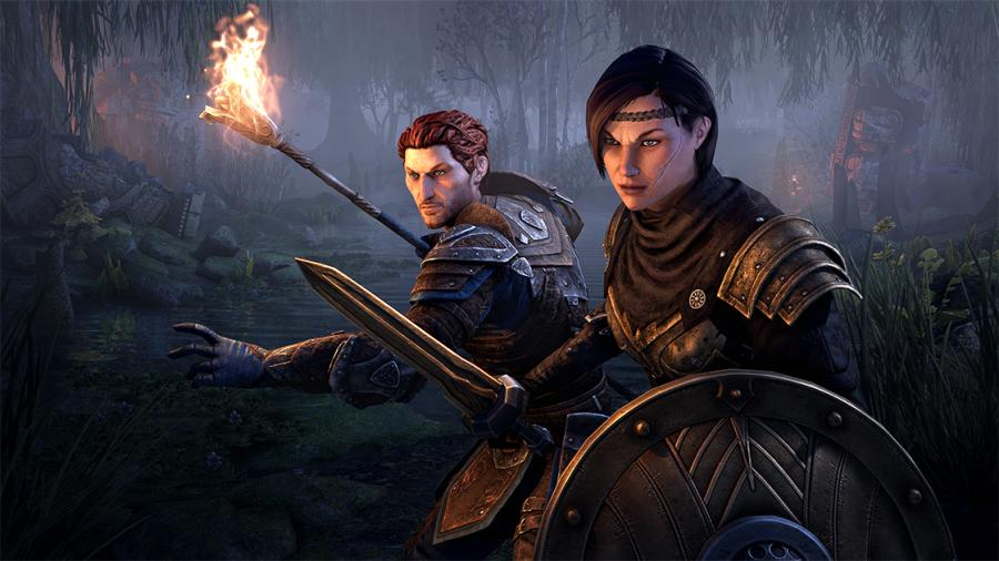 The Elder Scrolls Online - Blackwood Upgrade (Collector's Edition) Screenshot 2